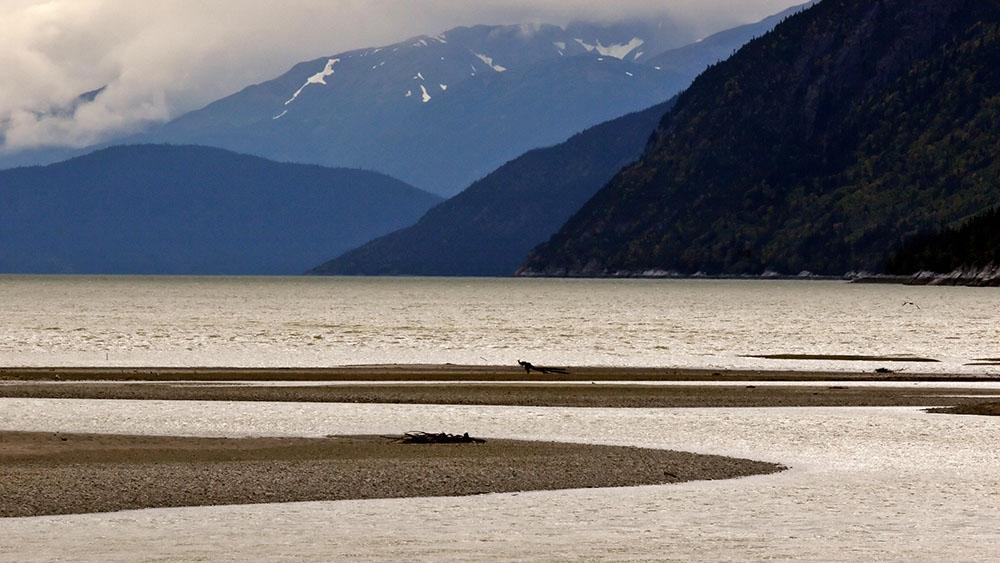Oil&Water_landscape_still